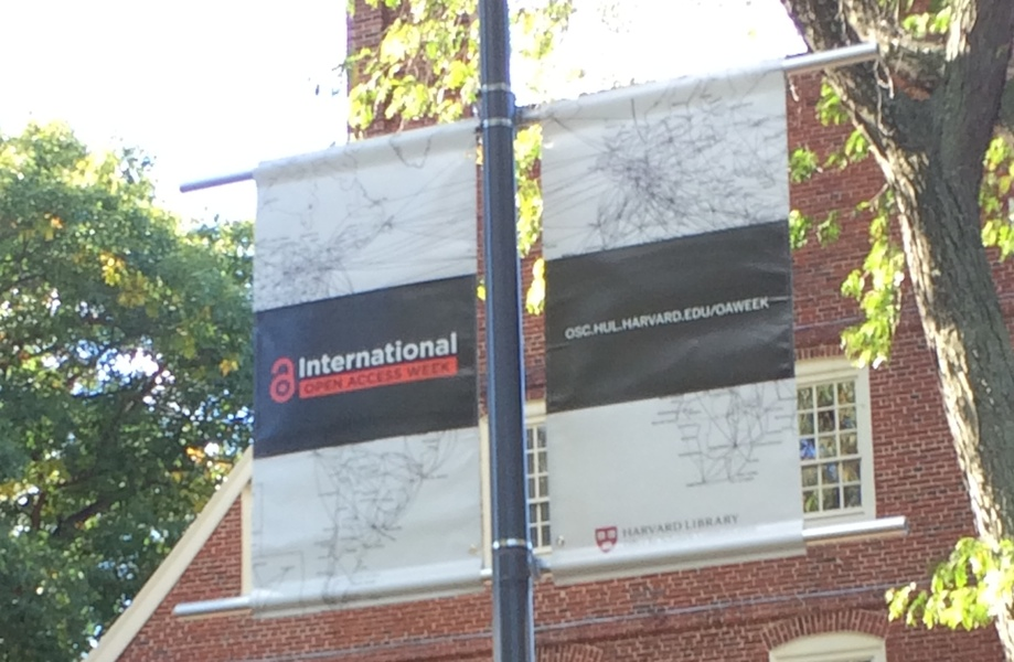 Open Access Banners flying in Harvard Yard